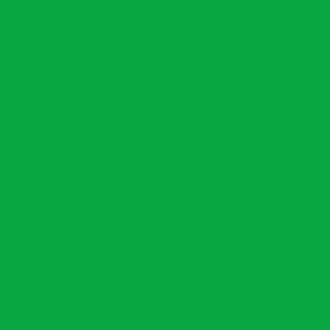 round (2)